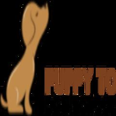 Puppy To Dog School