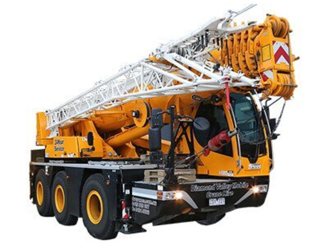 Now opt for our crane rental services at affordable prices - 1