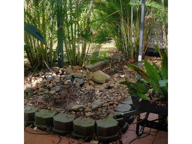 Vegi garden Services - Rogers Little Loaders - 5