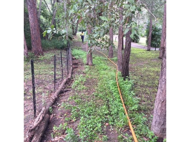 Trenching for electrical cable - Rogers Little Loaders. - 6
