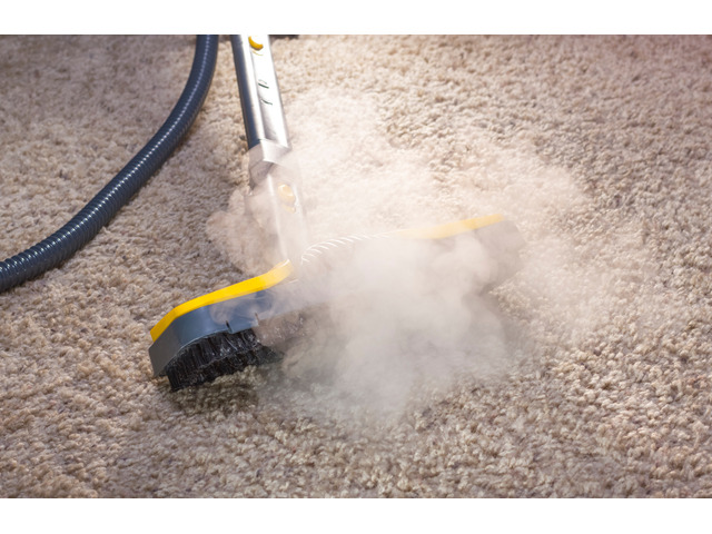 Carpet Steam Cleaning - 2