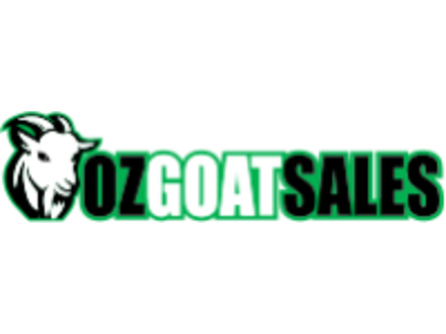 Goats for Sale in Victoria - 1