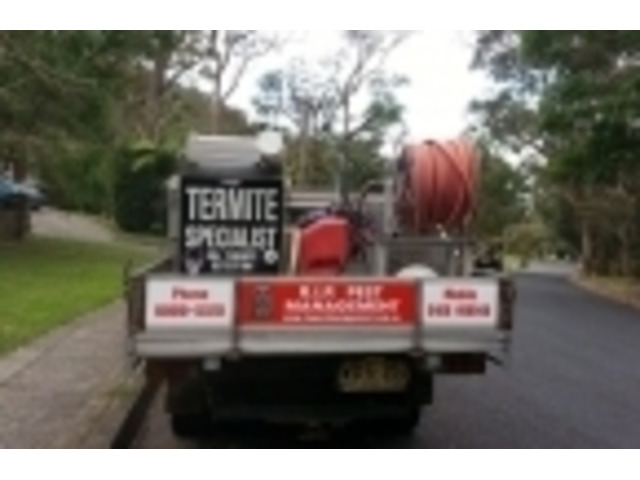 Are You In search of Pest Control Services Providers in your Property in Collaroy? - 1