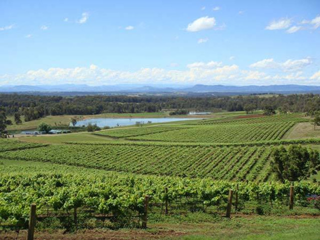 Hunter Valley Tour From Sydney   0406 909 810 - 1