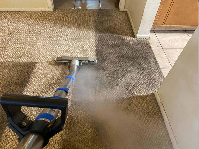 Carpet Cleaning Howrah - 3