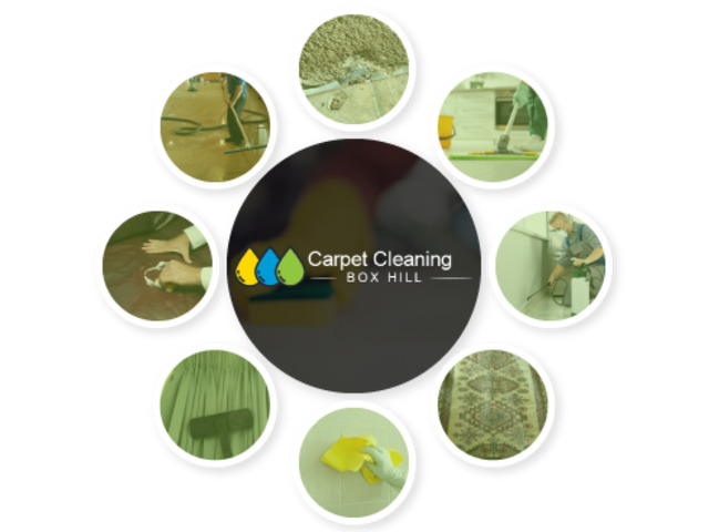 Carpet Cleaning Box Hill - 1