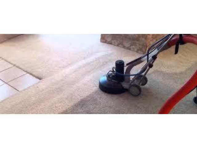 Carpet Cleaning Gisborne - 3