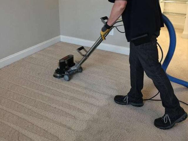Carpet Cleaning Gisborne - 4