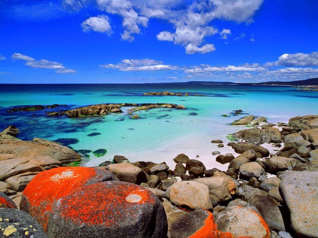 Australia's No 1 Travel Agency - We Made Your Travel Easy! - 2