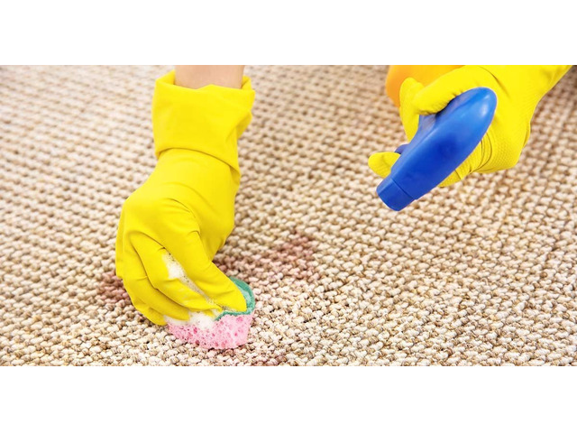 Carpet Cleaning North Hobart - 3
