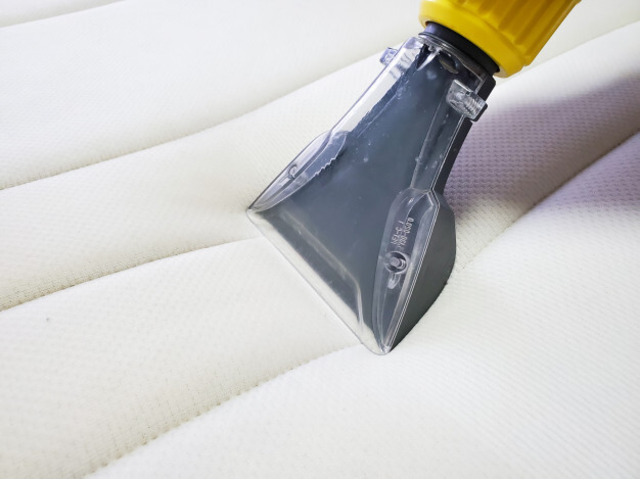 Tailored Bond Cleaning, Upholstery Cleaning & Pest Control in Gold Coast, Tweed Heads - 2