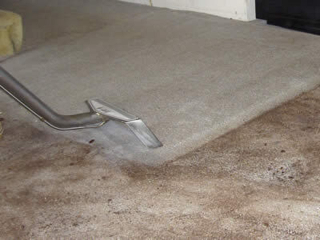Carpet Cleaning Margate - 3
