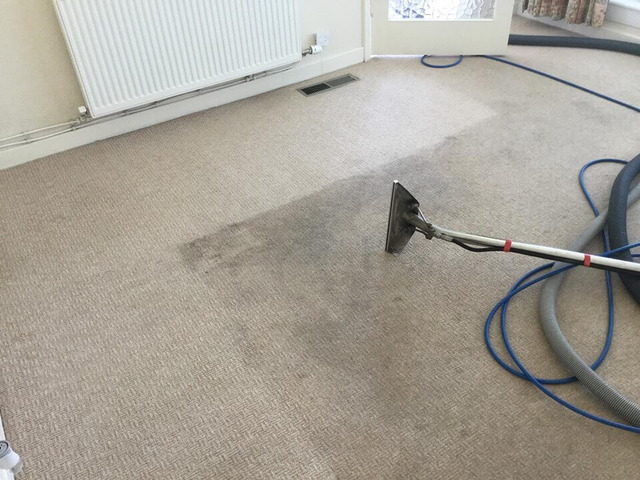 Carpet Cleaning Lenah Valley - 2