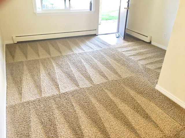 Carpet Cleaning Lenah Valley - 3
