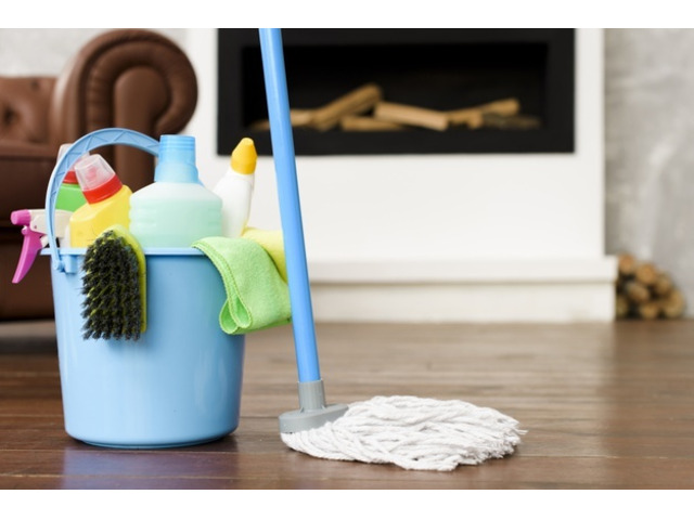 Are You Searching for a Carpet Cleaning Solution? - 1