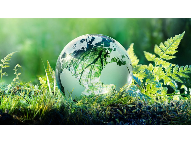 Exhibit Your Environmental Commitment with ISO 14001 Certification - 1