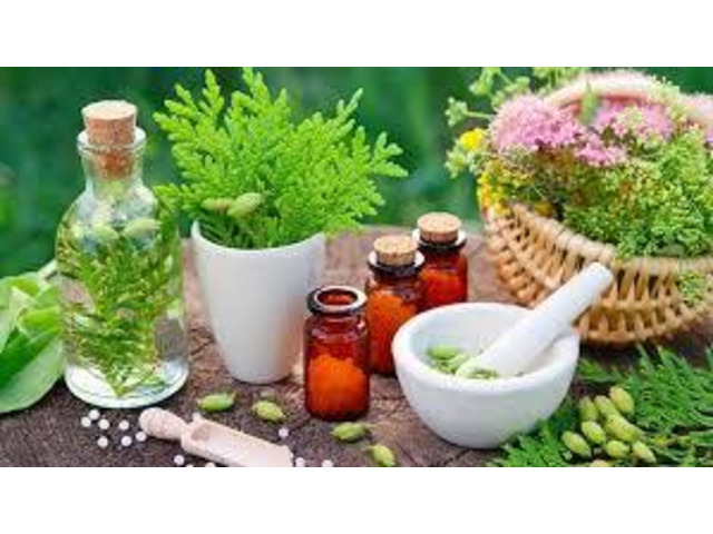 Contact Us To Benefit From The Best Nutrition Consultants - 1