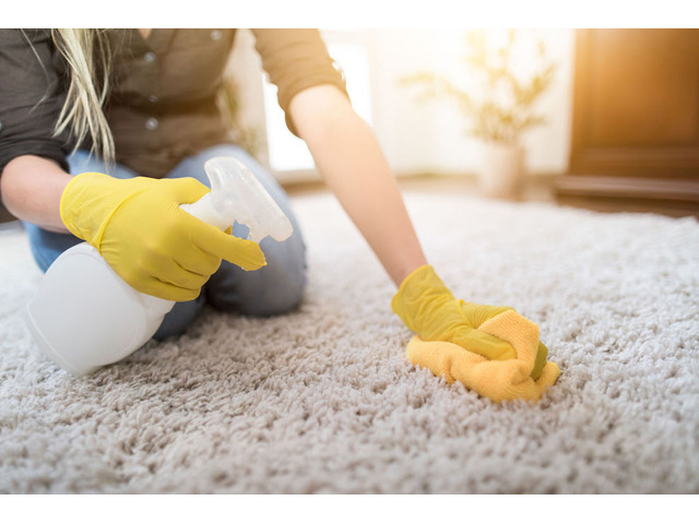 Carpet Stain Removal in Wyndham vale - 1
