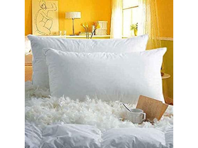 Hotel Goose Down Pillows - 1