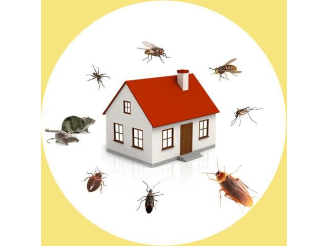 Pest Control Cranbourne - 4