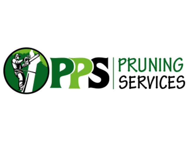Hire Tree Removal and Pruning Across Perth - 1
