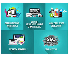 Digiwhiz - Web Design Development & Digital Marketing Agency