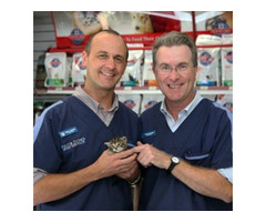 Amazing Pet Care Services From North Ryde Vet
