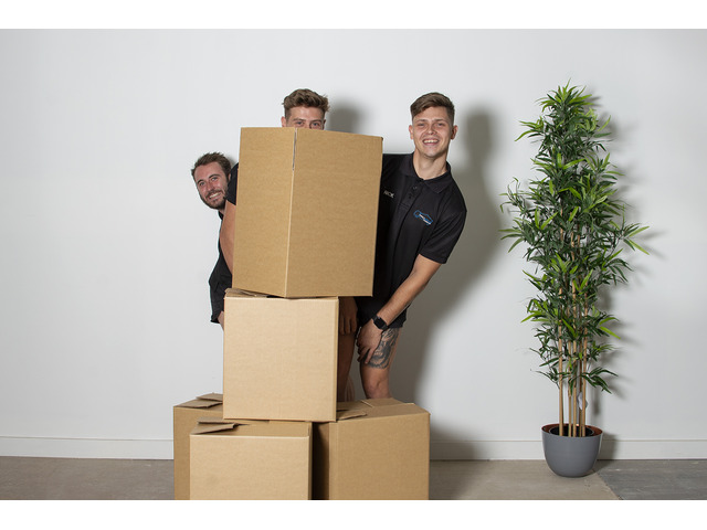 Cheap Furniture Movers Melbourne   Furniture Removalist Services   ProMove Transport - 1