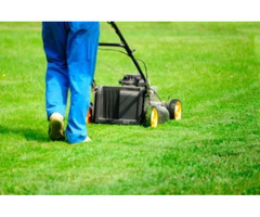 Claire's Garden Maintenance Provides Lawn Mowing in Mornington Peninsula
