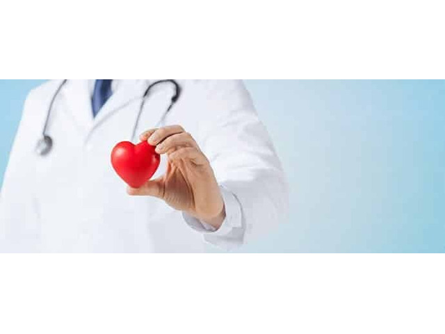 Cardiologist in Melbourne – SCCVS - 1