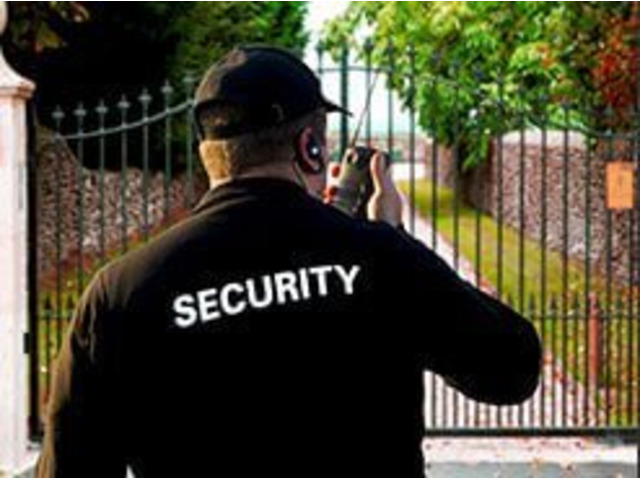 Professional Corporate Security Services - Keeping Businesses Safe in Simple Ways - 2