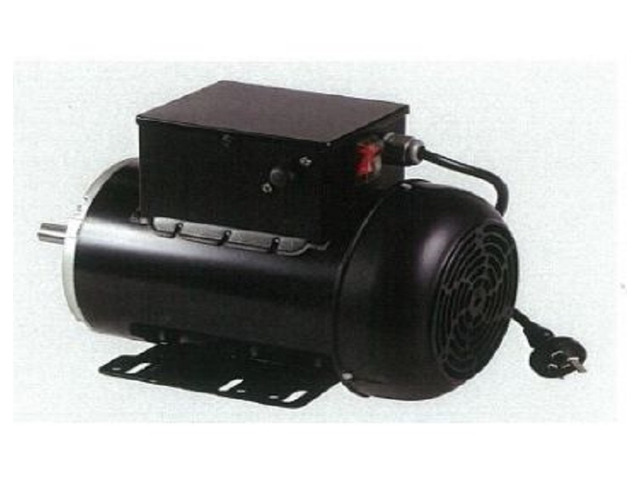 Looking for Single Phase Motors Online? - 1