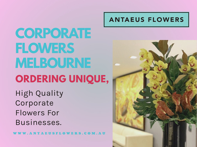 Corporate Flowers Melbourne | Antaeus Flowers - 1
