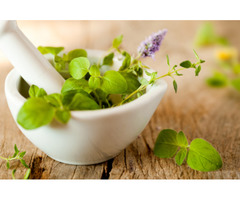 Naturopath Team Helps You Restore Your Health