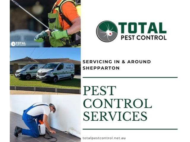 Bid Goodbye to Termites with Expert Termite Control Bendigo - 5