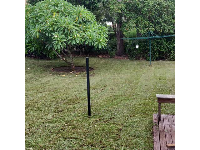Massive 550m2 irrigation and returf. (Backyard) - 7