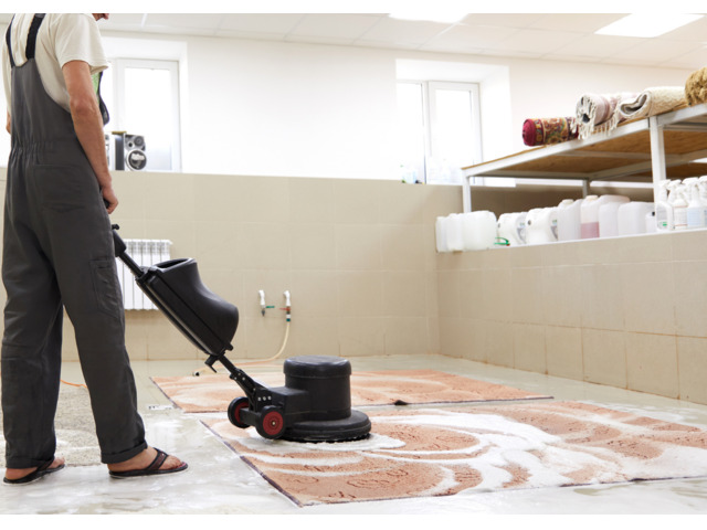 Searching for professional carpet cleaners in Perth? - 1
