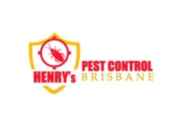 Local Pest Control Brisbane - 1