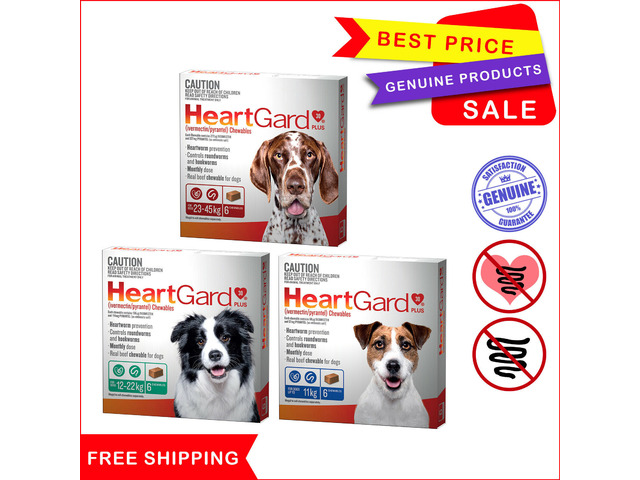 Heartgard plus to prevent from heartworm diseases - 1