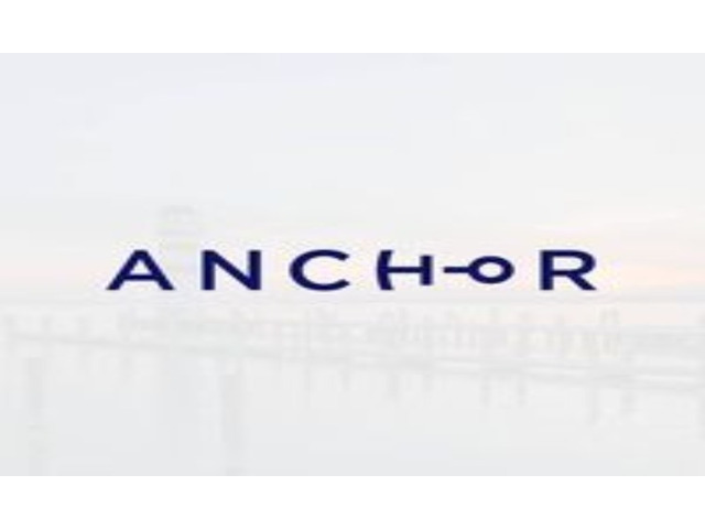 Best digital markeitng services|Anchor Digital Brisbane - 1