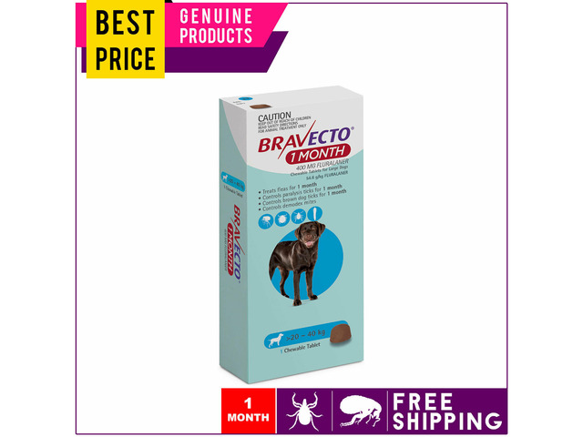 BRAVECTO 1 Dose For Large Dogs 20 to 40 Kg MONTHLY Blue Pack - 1