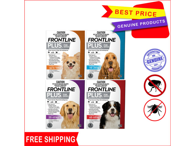 Frontline Plus- protection you can reply on - 1