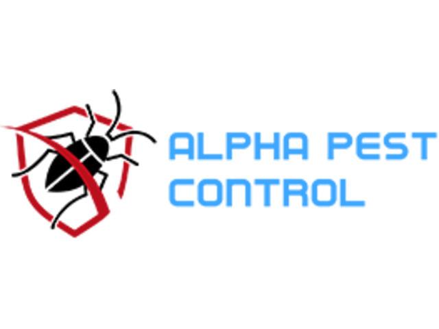 DRYSDALE PEST CONTROL SERVICE SPECIALISTS - 1