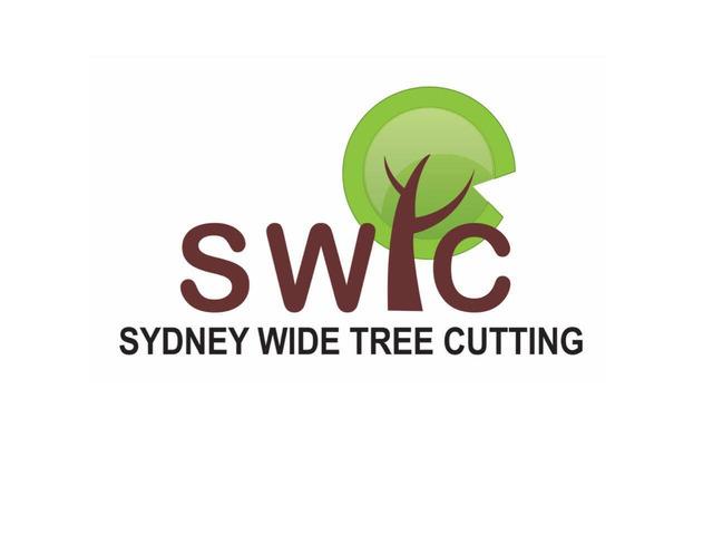 Sydney Wide Tree Cutting - 1