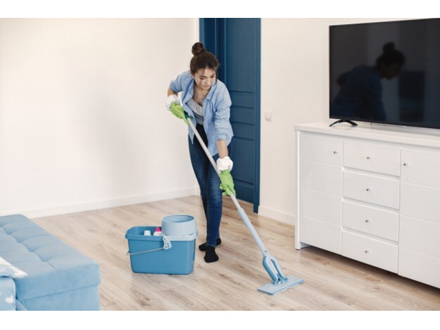 Want domestic cleaning services? - 1