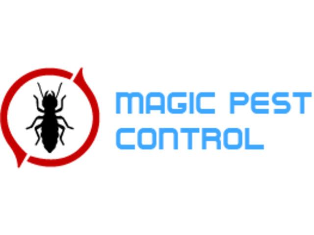 Pest Control Rippleside - 1