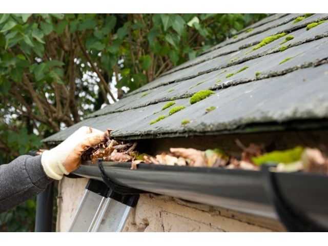 Gutter Cleaning in Sydney and Suburbs - 1