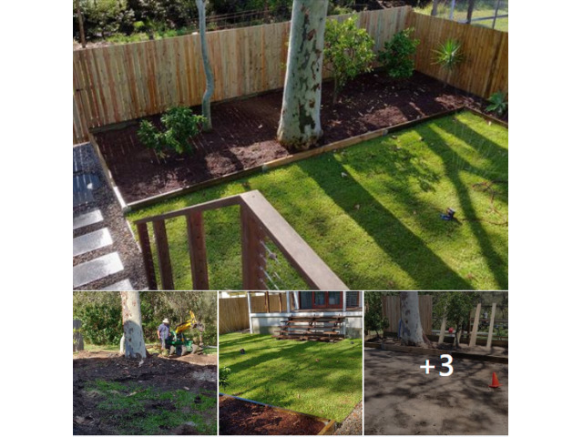 Landscaping in Lots - Turfing and gardens - 1