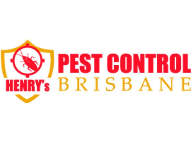 Pest Control Tarragindi - 1