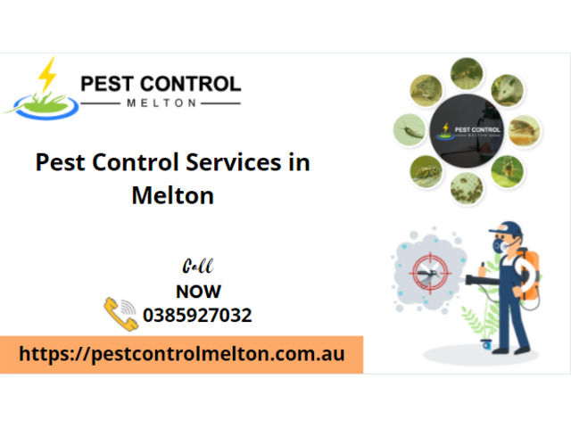 Pest Control Services in Melton - 1
